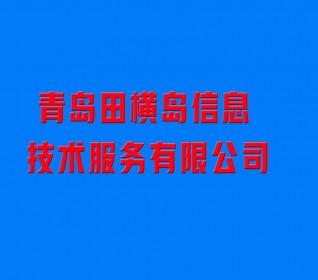 青岛田横岛信息技术服务有限公司