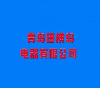 青岛田横岛电器有限公司